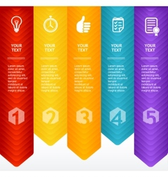 Timeline Infographic Colorful Template vector image