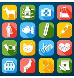Veterinary Icons Set vector image