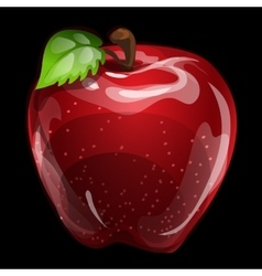 Red volume apple closeup natural image vector image vector image