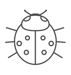 ladybird on white background vector image vector image