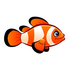 clownfish vector image