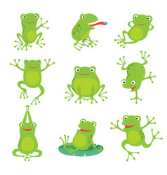 Cute cartoon frogs green croaking toad on lotus vector