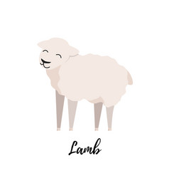 cute lamb flat isolated domestic sheep kid vector image
