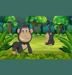 forest background with two gorilla playing vector image