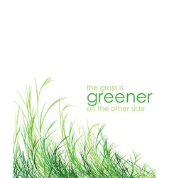 Grass is greener background vector image