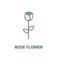 rose flower line icon linear concept vector image