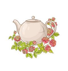 rose tea on white background vector image