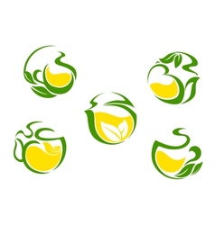 Tea symbols with lemon and green leaves vector image