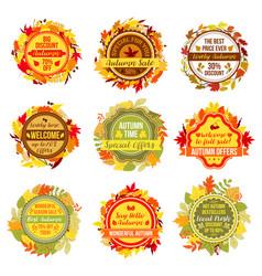 Autumn or fall sale leaf foliage icons vector