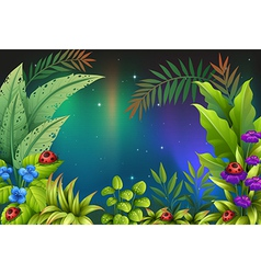 Five bugs in a rain forest vector