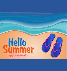 summer background with the sea and flip flops vector image