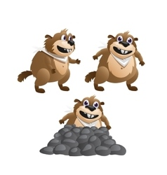 Three images of the beaver in various poses vector image vector image