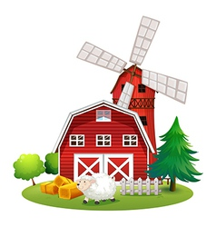 A sheep outside the red barnhouse vector image vector image