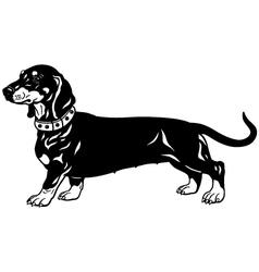 dachshund black white vector image vector image