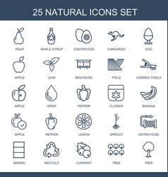 25 natural icons vector