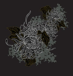 White Chrysanthemum vector image