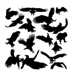 White tailed eagle animal silhouettes vector