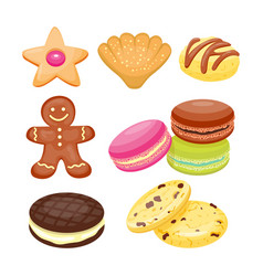 different cookie homemade breakfast bake cakes vector image