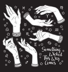 hand drawn set female witches hands in vector image
