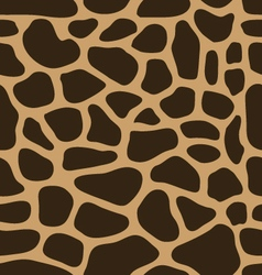 leather of giraffe vector image