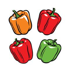 pepper symbol culinary seasoning food vector image
