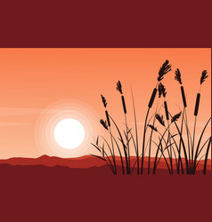 Silhouette of coarse grass on hill vector