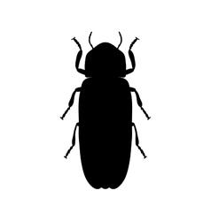 Firefly beetle Lampyridae Sketch of Firefly vector image vector image