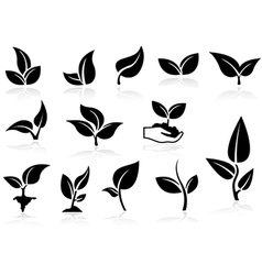 Plants Icons Set vector image vector image