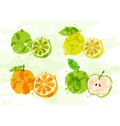 Set of colorful fresh fruit stains vector image vector image