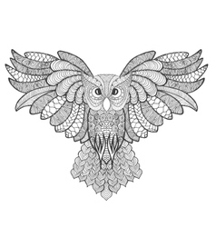Eagle owl Adult antistress coloring page vector image