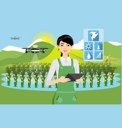 Farmer and drone are watering vegetables vector