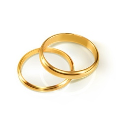 Pair of wedding rings vector