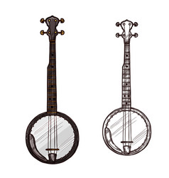 sketch banjo guitar musical instrument vector image