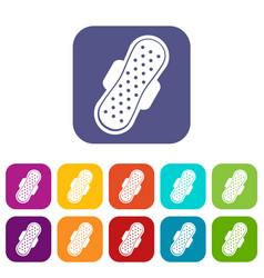sanitary napkin icons set flat vector image vector image