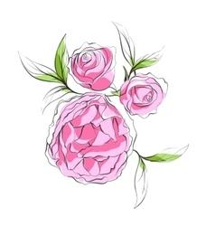 Bright pink peonies vector image