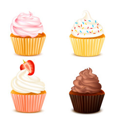 four colorful cupcakes isolated set vector image