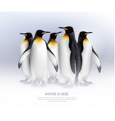 penguins realistic composition vector image
