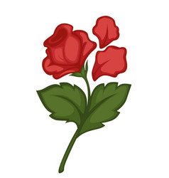 Rose noble flower and petals renaissance symbol vector