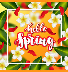hand drawn calligraphy hello spring vector image