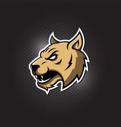 lynx wildcat logo mascot for sport team vector image