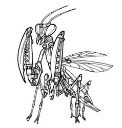 Mantis robot vector