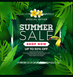 Summer sale design with flower toucan and exotic vector