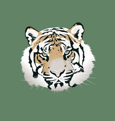 the tiger animal head icon vector image