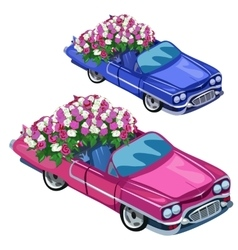White and blue cabriolet with bouquet of roses vector