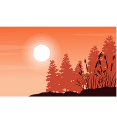 silhouette of coarse grass and spruce landscape vector image