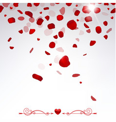 confetti falling rose petals vector image