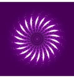 Firework ornament vector image