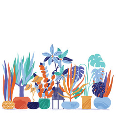 funky flat style house plants standing in line vector image