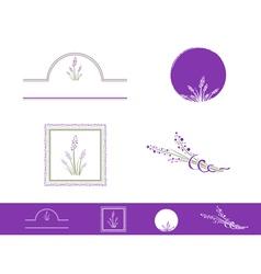 Lavender vector image vector image