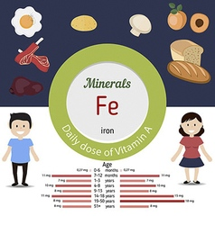 Minerals fe infographic vector